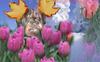 Winston_flowers1