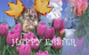 Winston_flowerseaster_2