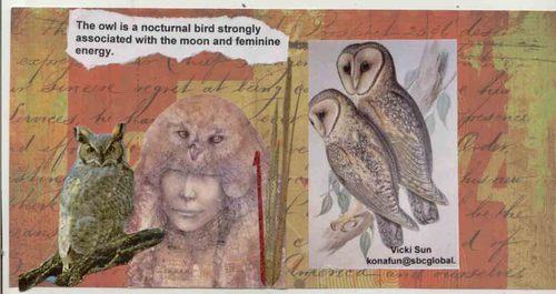 Bird_fatbook