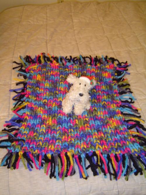 Doggy Blanket2